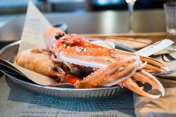 Foto: QWERTZ im Restaurant Matbaren